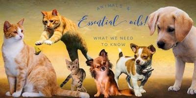 Animals and Essential Oils!