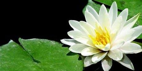 Introductory FREE Reiki Talk + Healing Meditation tickets