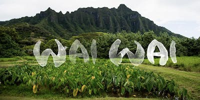 Honored Guest // WAI WAI The Value of Hawaiian Water