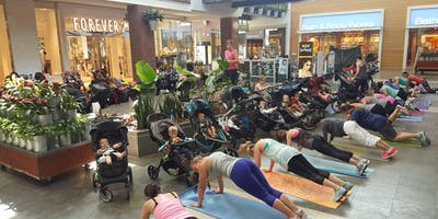 Free New Mama Preview Stroller Strides® Class
