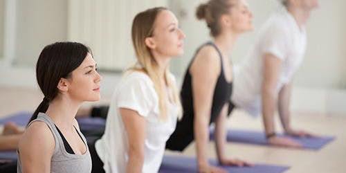 Precision, pace and grace: a yoga workshop with Erika Shapiro