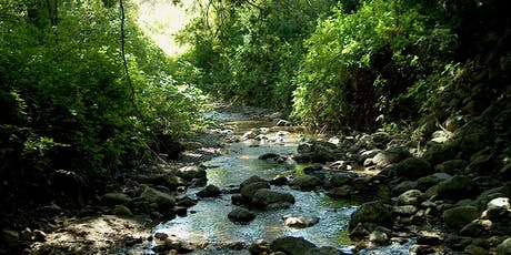 Ivy League: Habitat Restoration on San Francisquito Creek tickets