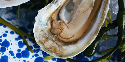 OYSTER CLASS FEBRUARY