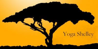 Hatha Yoga Class Monday Shelley Paterson Cost