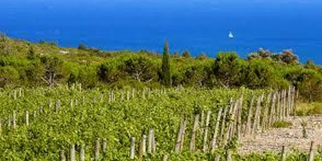 Southern France: Wines of Provence and Languedoc | Boston Wine School @ Roslindale tickets