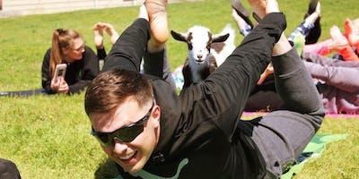 Goat Yoga in Copperas Cove