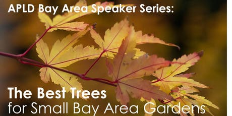 The Best Trees For Small Bay Area Gardens tickets