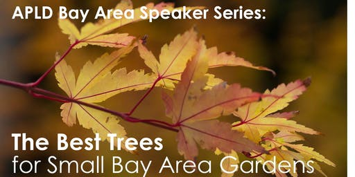 The Best Trees For Small Bay Area Gardens