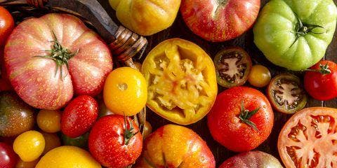 Celebrate Tomatoes! Italian Wine Dinner