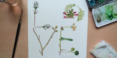 Workshop: Drawn from Life Botanical Letters with Laura Poulette