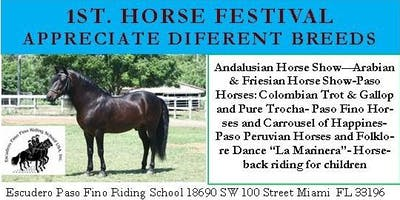 Horse Festival: Show Of Many Horse Breeds For A Fun-Educational-Family Afternoon