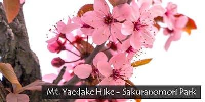 SMP TRIP_ 02.02_Sakura Hike