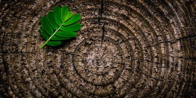An Introduction Centering Prayer Meditation