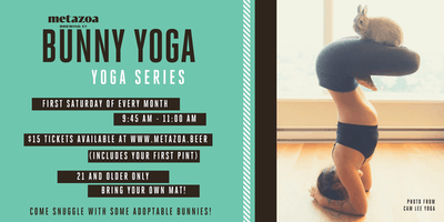 Bunny Yoga: Monthly Yoga Series at Metazoa Brewing Co.