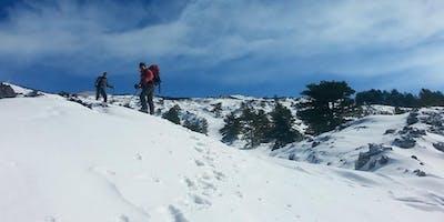 Passeggiata sui sentieri innevati dell'Etna