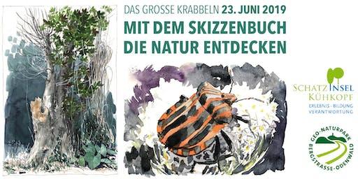 Mit dem Skizzenbuch die Natur entdecken - Das große Krabbeln