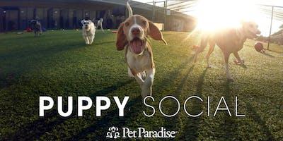 Pet Paradise Tallahassee Puppy Social 2019