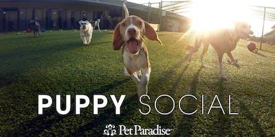 Pet Paradise Las Colinas Puppy Social 2019