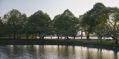 Guided Tree Tour on the Esplanade