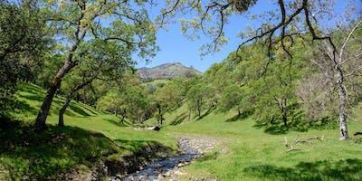 Curry Creek Audubon Hike