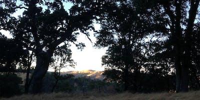 Wright Canyon Evening Property Tour