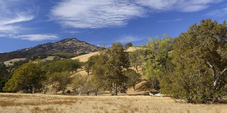 Curry Canyon Ranch (Lower 200) Full Moon Hike tickets