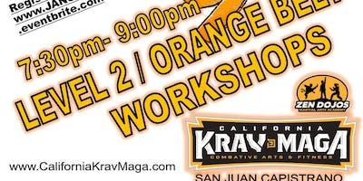 1/22/19  Krav Maga Orange Belt Workshop