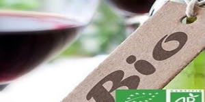 AFTERWORK  : La Découverte des vins bio