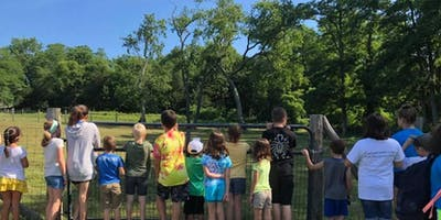 Camp Wetu 2019 - Session 1 - Wilderness Trail Blazers - June 24-28 and July 8-12 (No camp the week of July 4th)