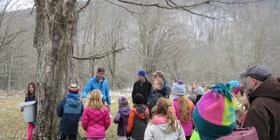Maple Sugar Tours and Open House