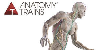 Anatomy Trains Structural Essentials: Head, Neck, & Jaw