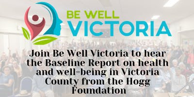 Victoria County Community Baseline Report