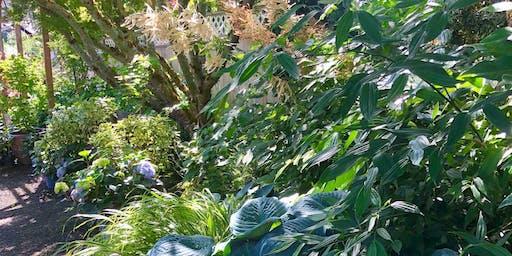 PNW Shade Gardening