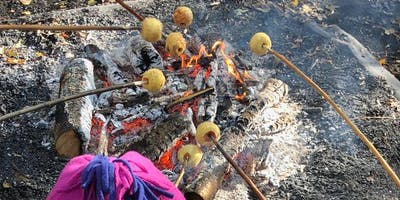Sticky Campfire Apples & Survival Dens at Ryton Pools Country Park