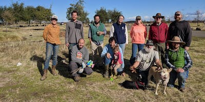 Community Planting Days at Capay Open Space Park