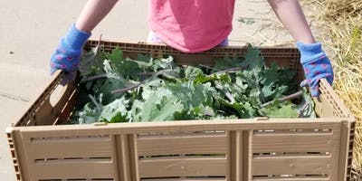 Farm Camp at the Wabash Farmette July 29 - August 2