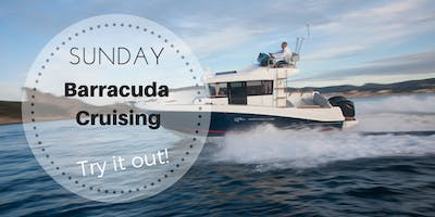 3 Hours Bay Cruise On Our Barracuda 7 - Sunday March 24