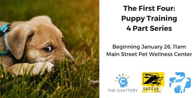 The First Four: Puppy Training - 4 Part Series
