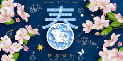 2019 Chinese Spring Festival Gala: The Year of Pig