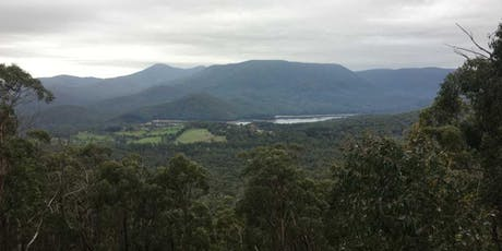 Mt Riddell Summit 12km  Hike, on July the 14th, 2019 tickets