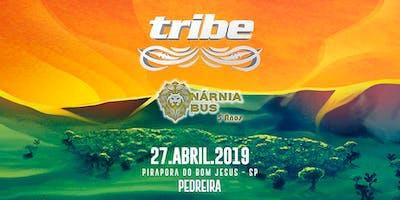 TRIBE 2019 | Nárnia Bus