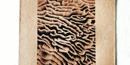 100% Mushroom Papermaking: hand crafting funky fungal equisit and unique paper
