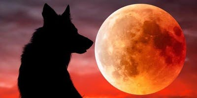 Super Blood Wolf Moon Celebration
