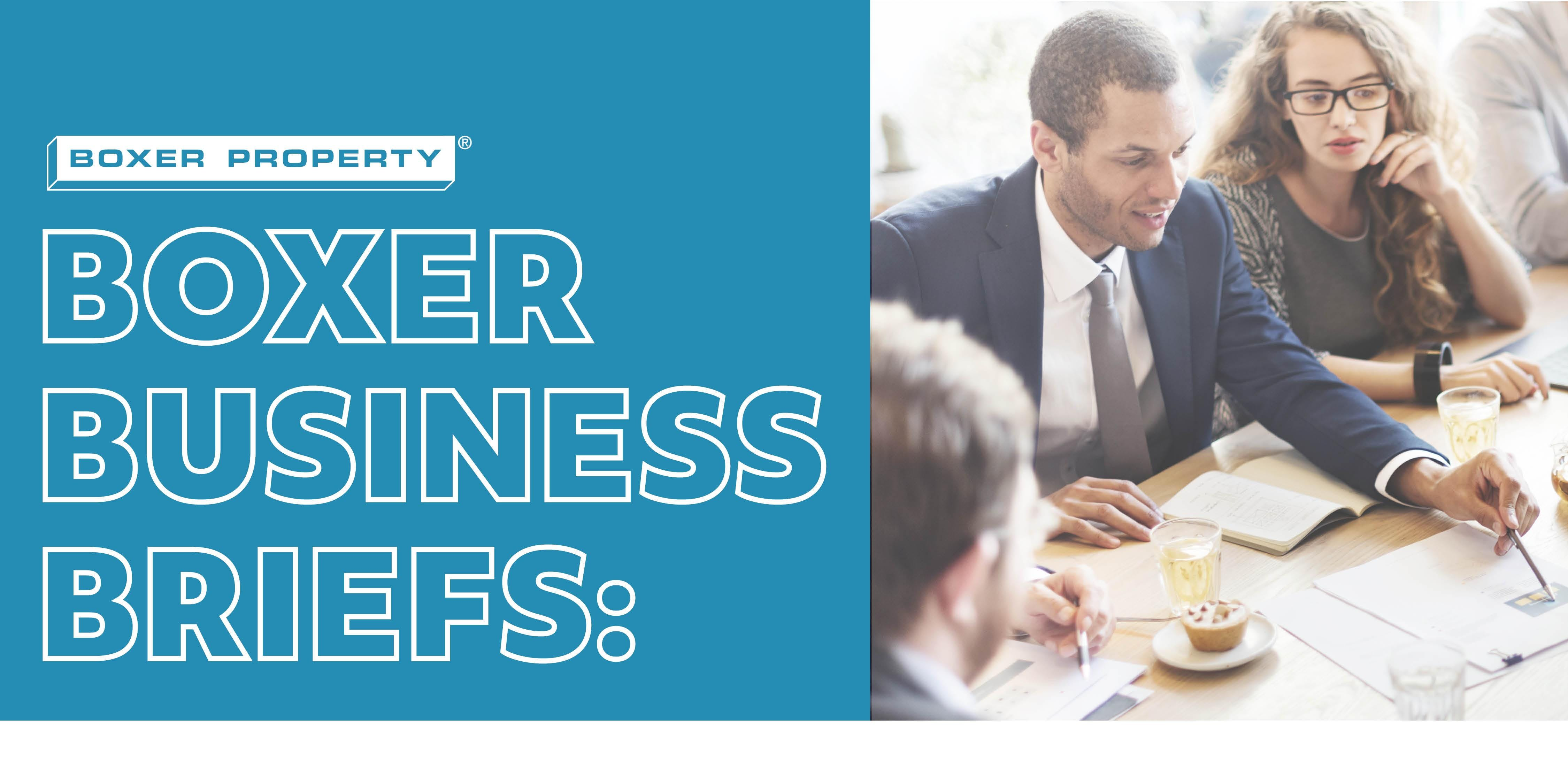 Boxer Business Briefs: Digital Marketing Strategies