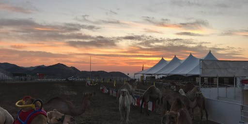 60th Annual International Camel & Ostrich Races Friday 9/6/19 5pm - Hot Camel Nights