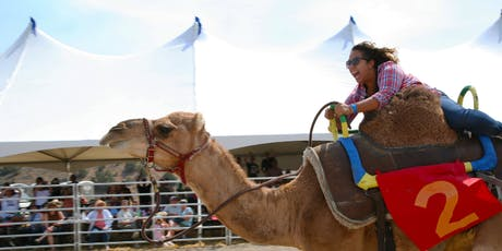 60th Annual International Camel & Ostrich Races Championship Sunday 9/8/19 tickets