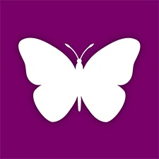 The Butterfly Club logo