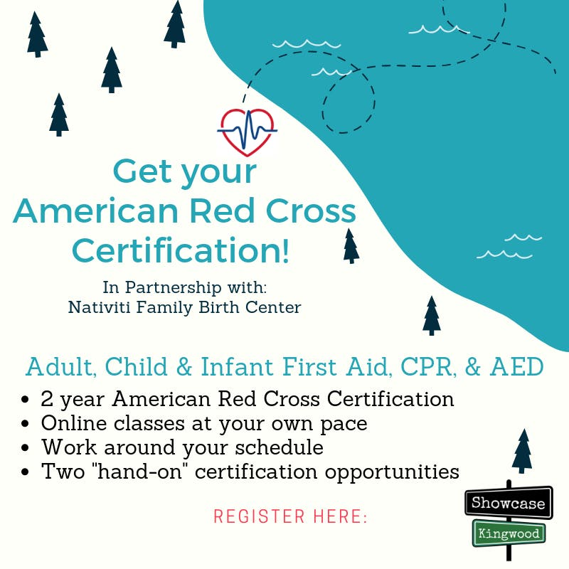 Adult Pediatric First Aidcpraed Certification Class 18 Feb 2019
