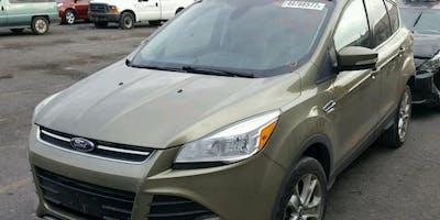 Online Auto Auction inOcala, Fl on January22th 2019