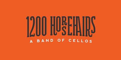 1200 Horsehairs Music Night